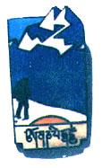 1990_pin